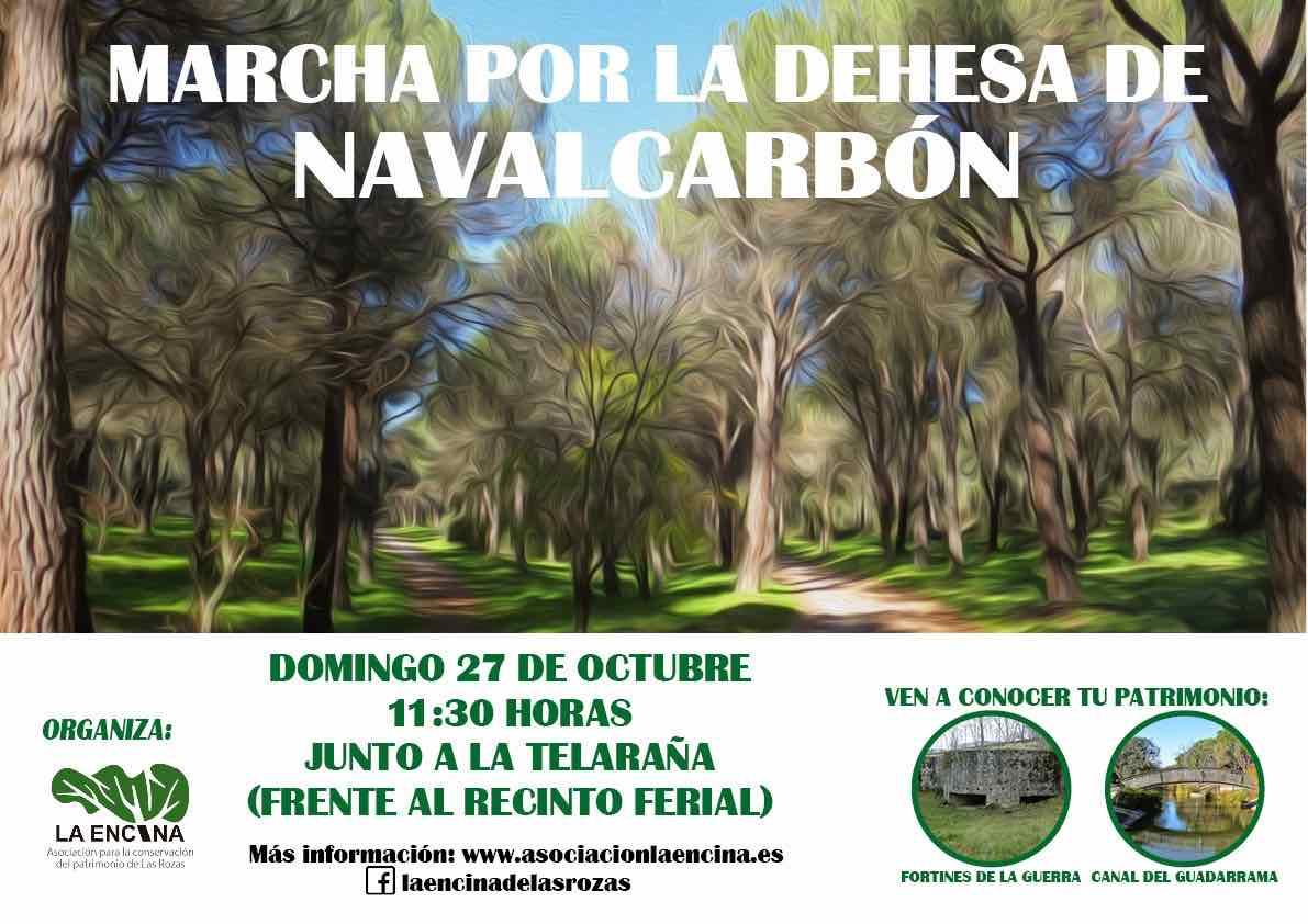Asociación La Encina organiza una marcha por la dehesa de Navalcarbón