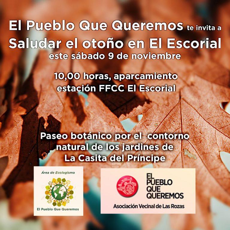 Saludar el otoño sábado 9 de noviembre